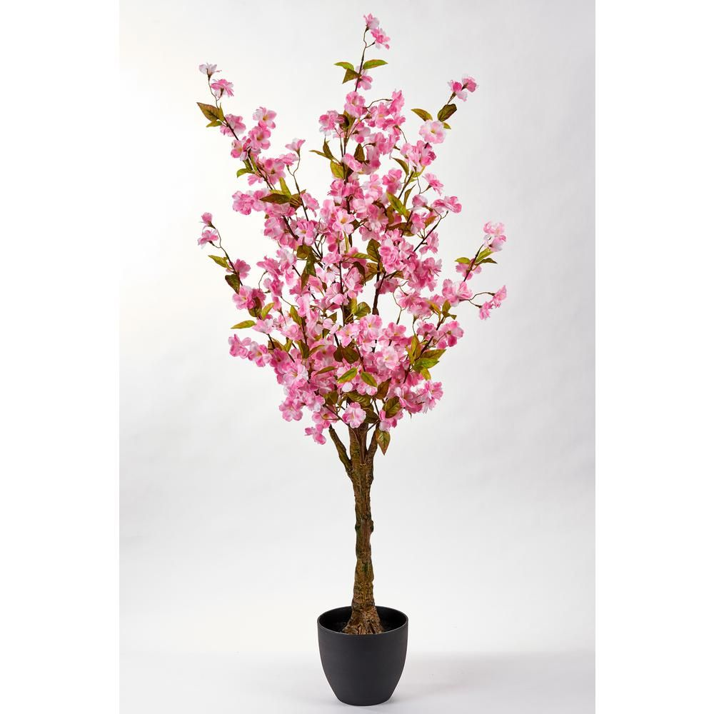 Worth Imports 51 In Cherry Tree In Pot 3291 The Home Depot Potted Trees Blossom Trees Ficus Tree