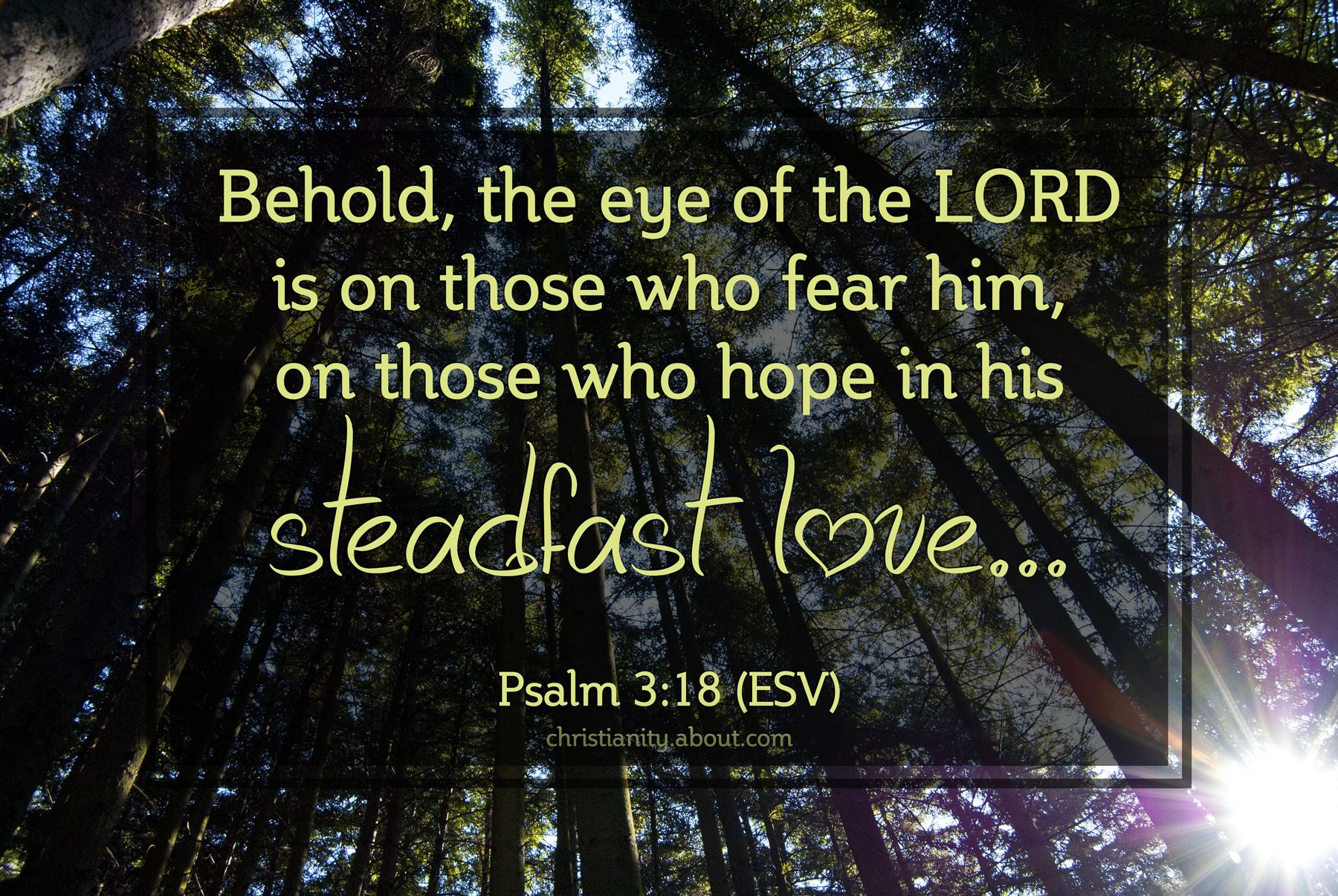 #cre8365 - February 24 - Hope in His Steadfast Love - for verse of the day: http://christianity.about.com/od/verseoftheday/qt/verseday365.htm