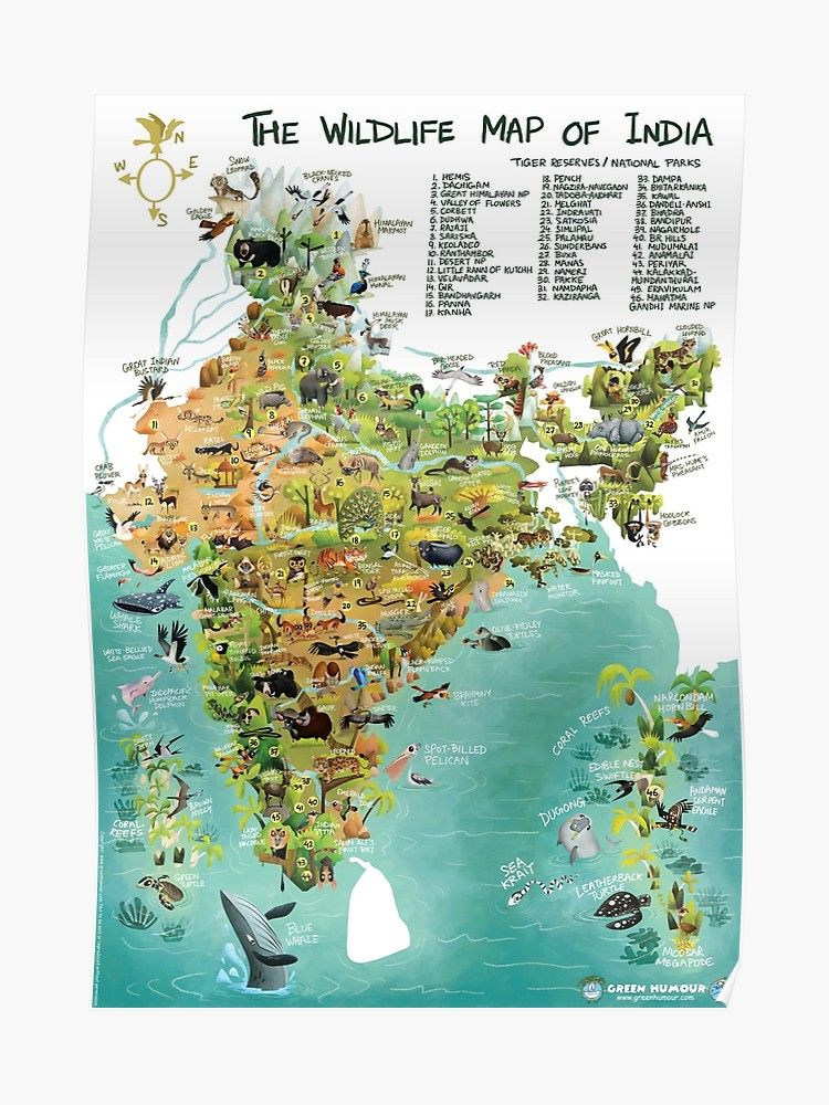 The wildlife map of india poster by rohanchak india