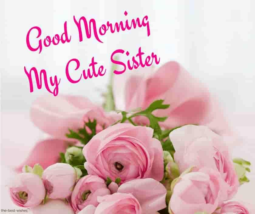 Good Morning My Cute Sister Good Morning Sister Images Good Morning Flowers Good Morning Sister