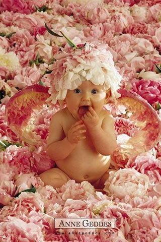 Anne Geddes..flower baby!....