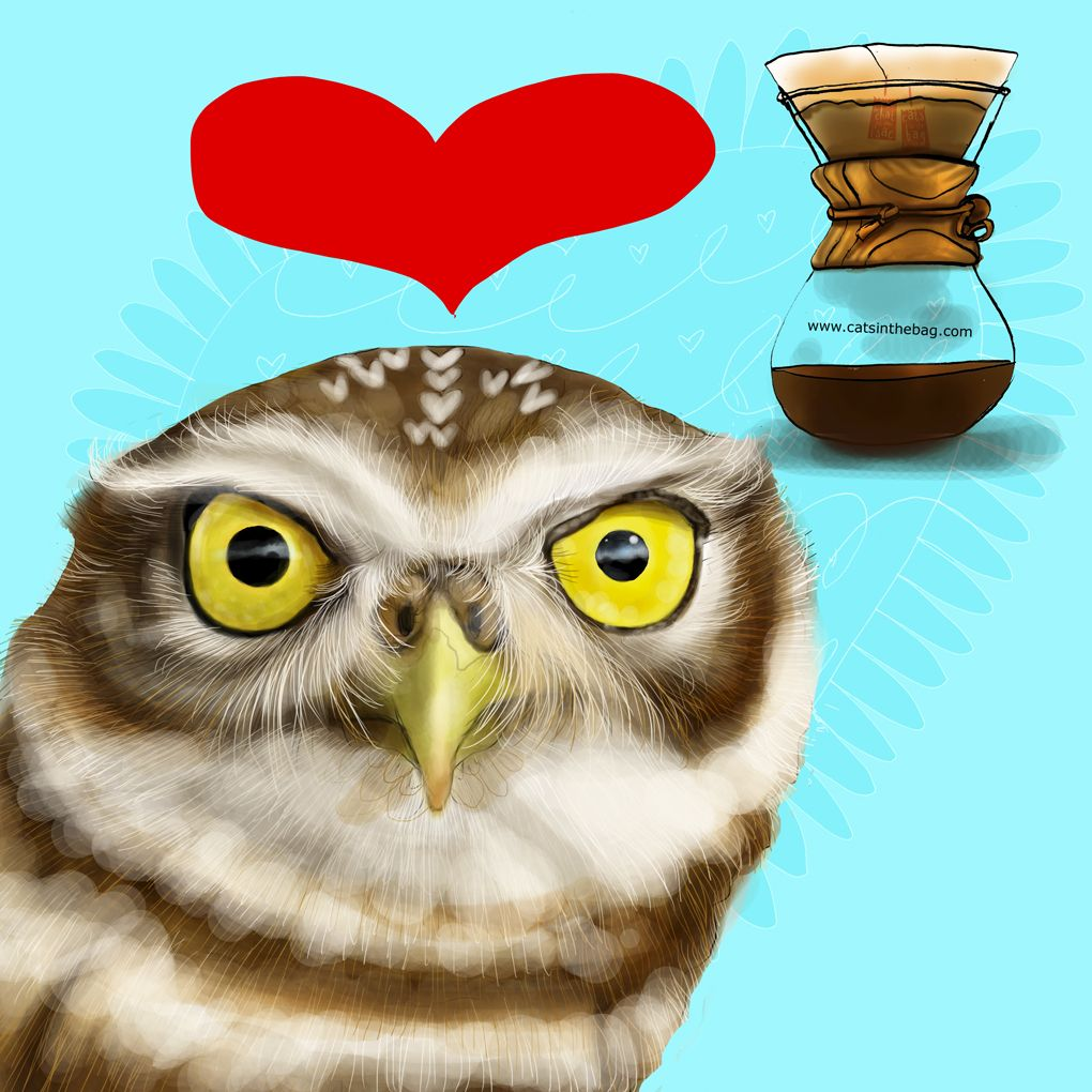 Coffee, friends,Thanksgiving and full moon magic! What my Coffee says to me October 13 - drink YOUR life in - find joy in Thanksgiving long weekend. Hoot! Hoot! Hoot! The burrowing owl is an endangered species – let's love all of creation equally <3 Jennifer R. Cook grateful to create an illustration each day for your mental health!