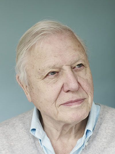 David Attenborough by Suki Dhanda for The Observer