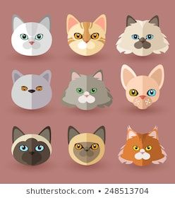 the cats head stock vectors images  vector art