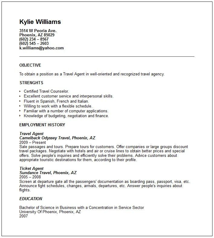 sample resume corporate travel manager