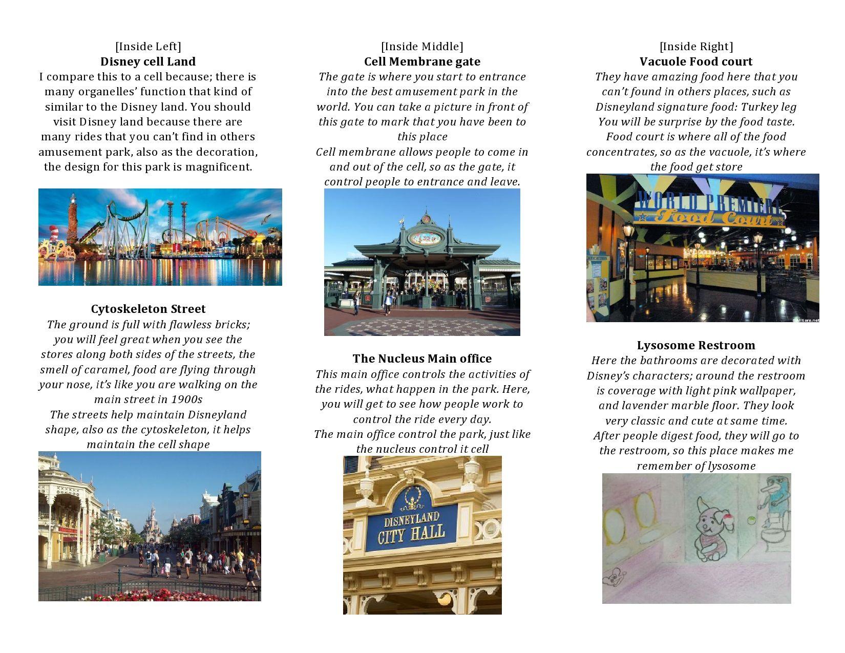 Brochure Cell Project Amusement Park Wwwtollebildcom