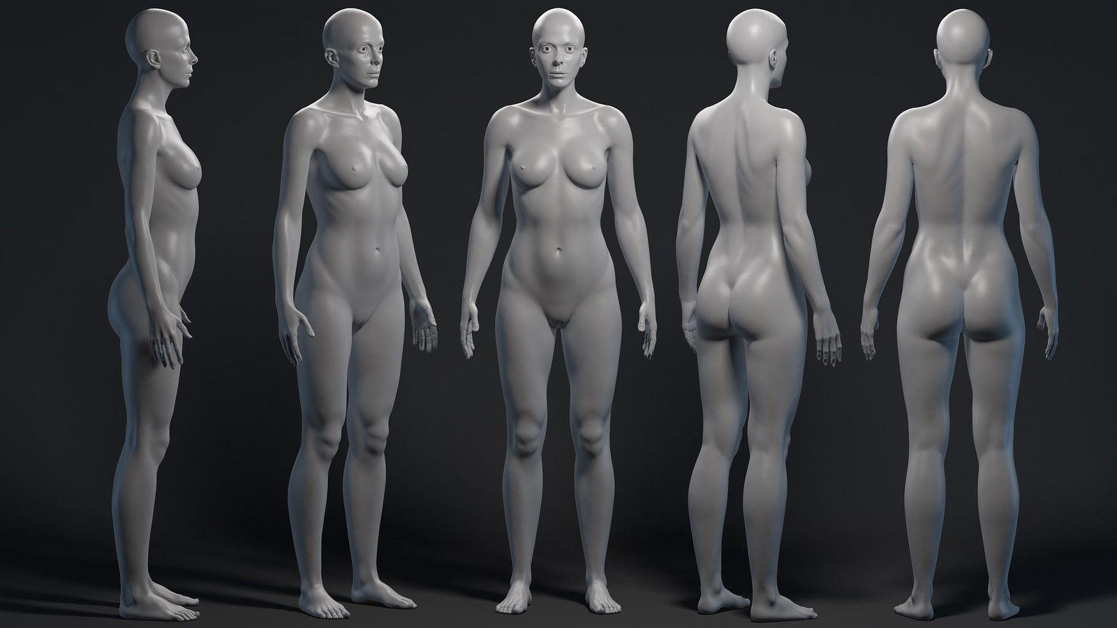 WIP Female Anatomy Study, Giovanni Manili on ArtStation at https ...