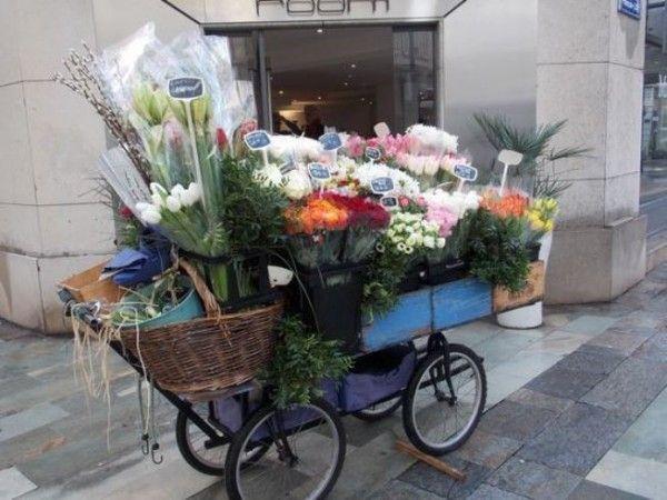 Fleuriste Ambulant Une Belle Idee De Christian Fleuriste Jardinerie Idee