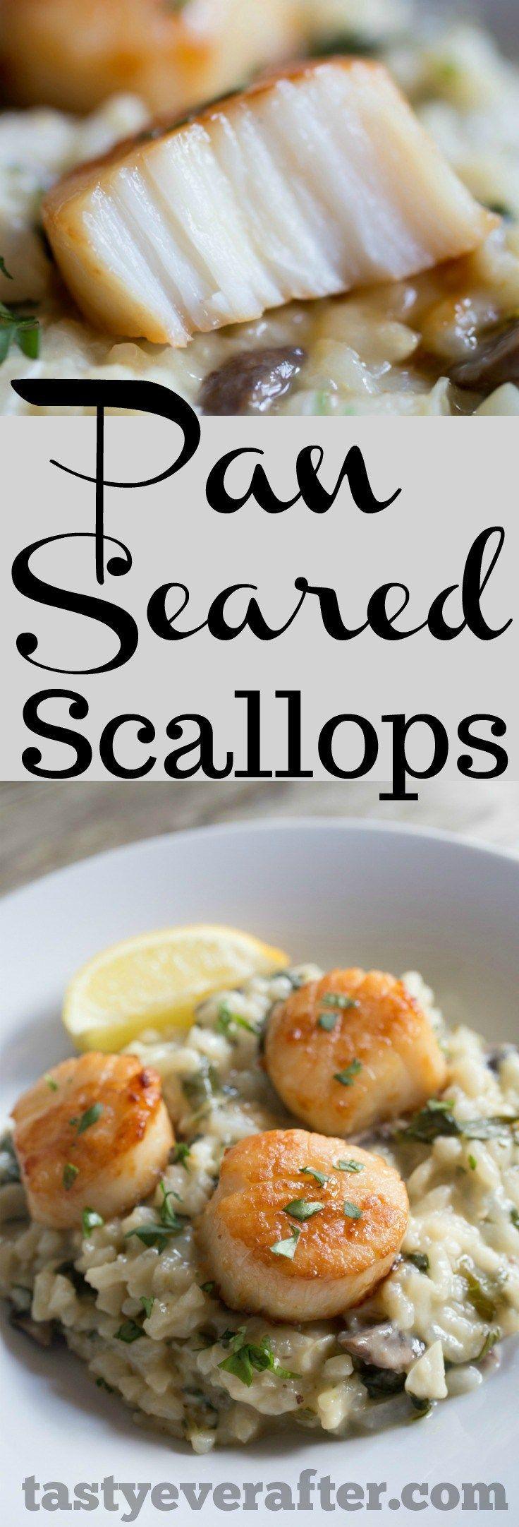 pan seared scallops recipe seafood dinner scallop recipes pan seared scallops pinterest