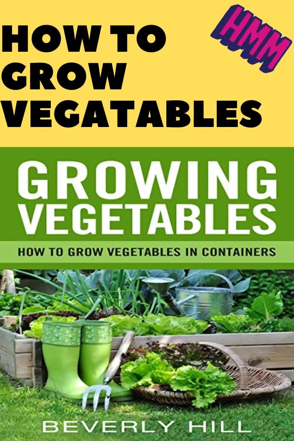 Photo of Ideas for when to plant your vegetable garden in your garden