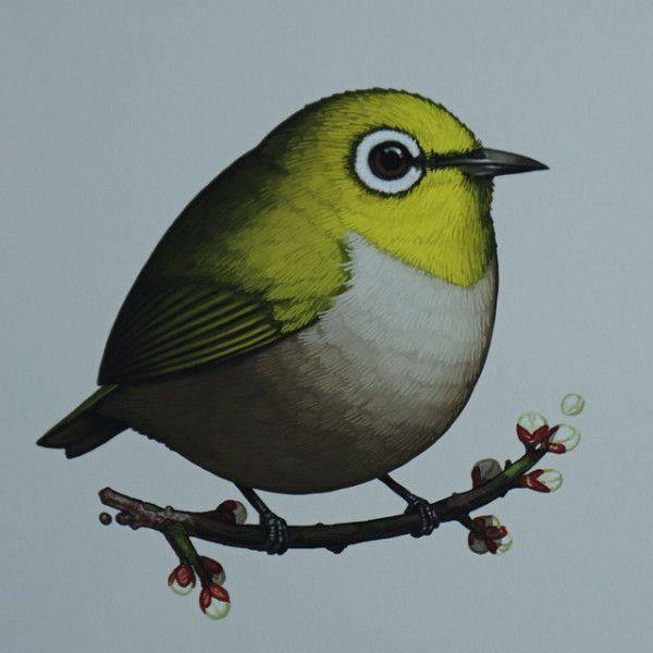 Fat Bird - 2016 Mike Mitchell Japanese White-eye poster/print AP
