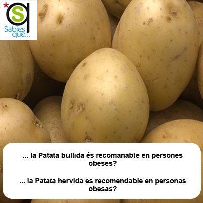 La #Patata hervida es recomendable en personas #obesas / La #Patata bullida és recomanable en persones #obeses