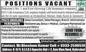 Efu Life Assurance Ltd Hyderabad Jobs Sales Consultant Sales