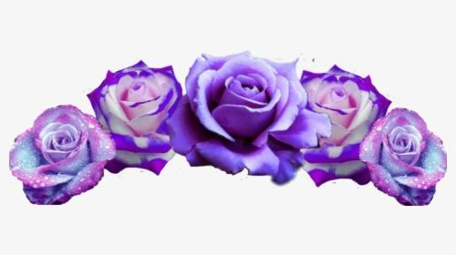 Flowercrown Flower Crown Headpiece Headband Pretty Transparent Purple Transparent Flower Crowns Hd Png Download Crown Png Blue Flower Crown Flowers