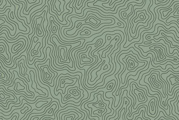Topographic Elevation Maps | textures | Map vector, Contour line, Map