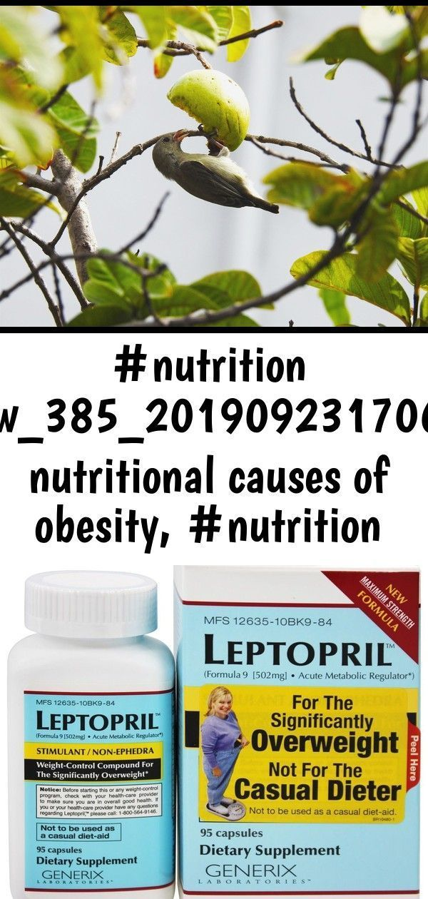 #nutrition interview_385_20190923170655_54 nutritional causes of obesity, #nutrition facts for 7-1 5 #walnutsnutrition #nutrition interview_385_20190923170655_54    nutritional causes of obesity,  #nutrition facts for 7-11 hot dogs,  nutrition graduates,  nutrition metabolism and energy balance in the atmosphere and ocean,  nutrition presentation titles ideas,  trader joe's raw walnuts nutrition,  nutrition plan ukulele strings,  california academy of nutrition and dietetics 2017 nba, #walnutsnu #walnutsnutrition