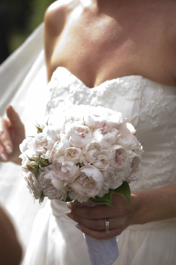 Pure White David Austin Roses Bouquet White Rose Wedding Bouquet