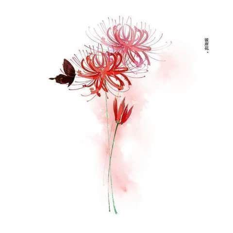 [Album] Ảnh ngôn tình - Cây cỏ hoa lá (1)