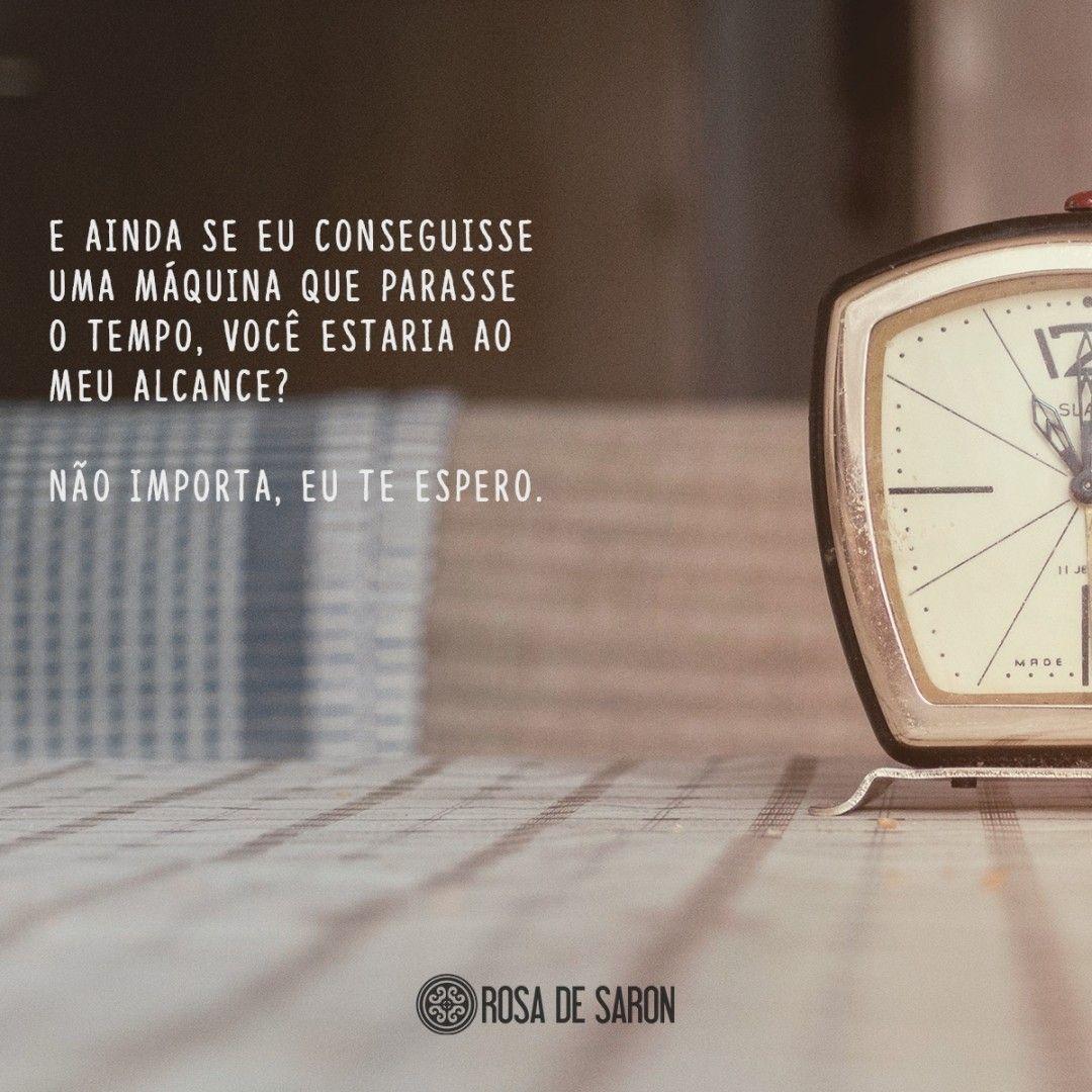 Máquina do Tempo - Rosa de Saron