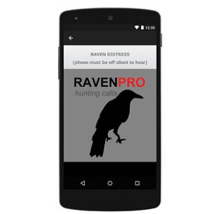 Raven Calls for Hunting- የቅጽበታዊ ገጽ እይታ ድንክዬ