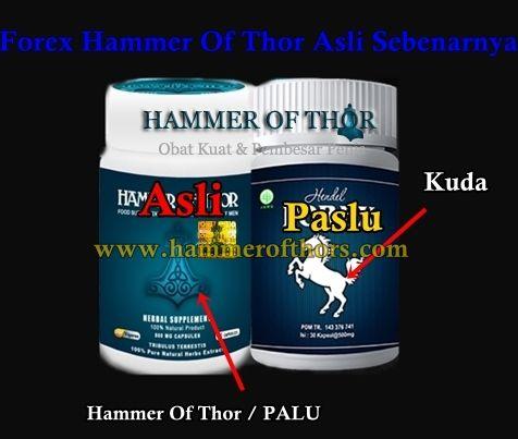 forex hammer of thor asli sebenarnya apa obat terbaik memperbesar