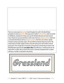 Terrestrial Ecosystems Food Webs My Classroom Pinterest Biomes