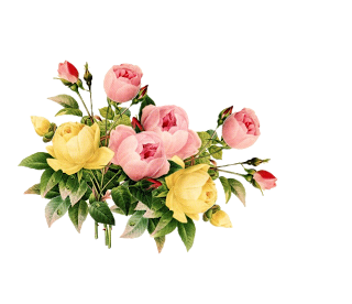 kumpulan gambar bunga png bunga syafaat in 2020 vintage flowers flowers floral wreath kumpulan gambar bunga png bunga syafaat