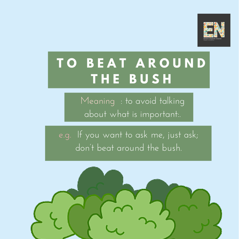 why do people beat around the bush