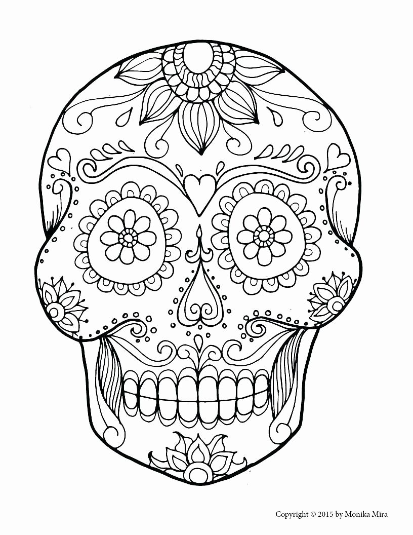 Sugar Skull Drawing Template At Paintingvalley Explore With Blank Sugar Skull Template Great Profes In 2020 Skull Coloring Pages Sugar Skull Drawing Skull Template