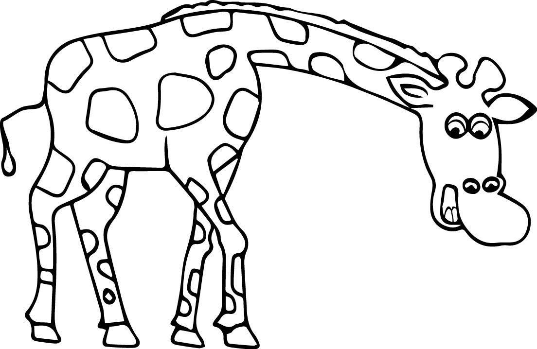 ausmalen giraffe  ausmalbilder malvorlagen tiere giraffen