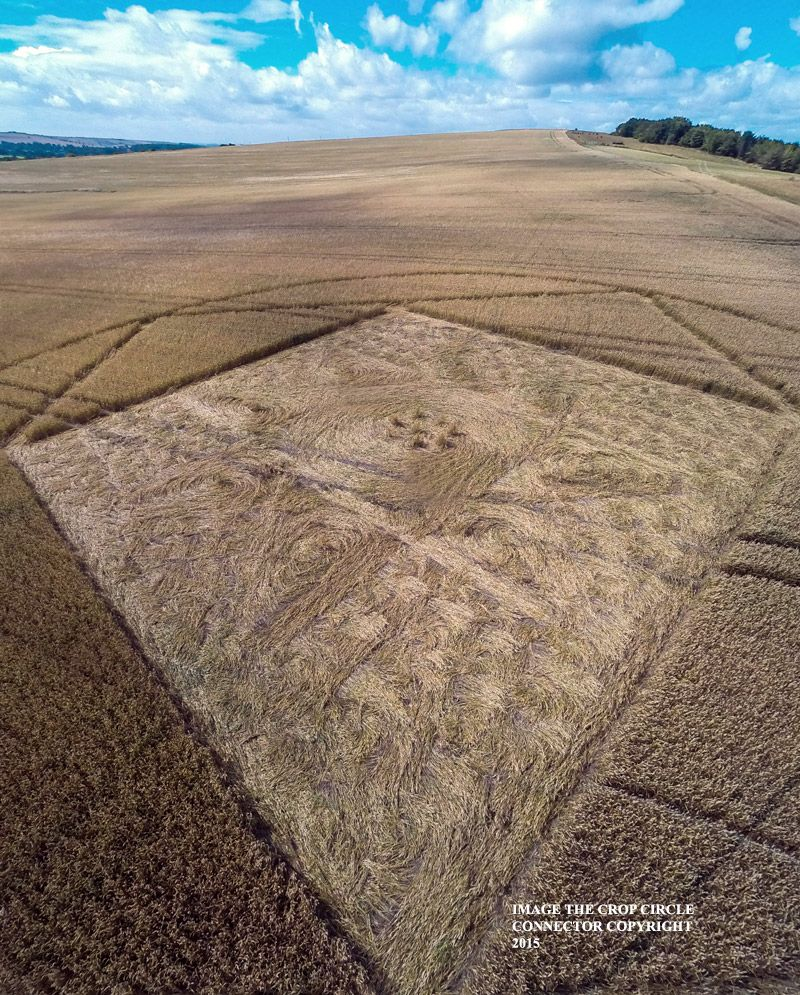 Crop Circle at Etchilhampton, nr Devizes, Wiltshire, United Kingdom. Reported 4th August 2015