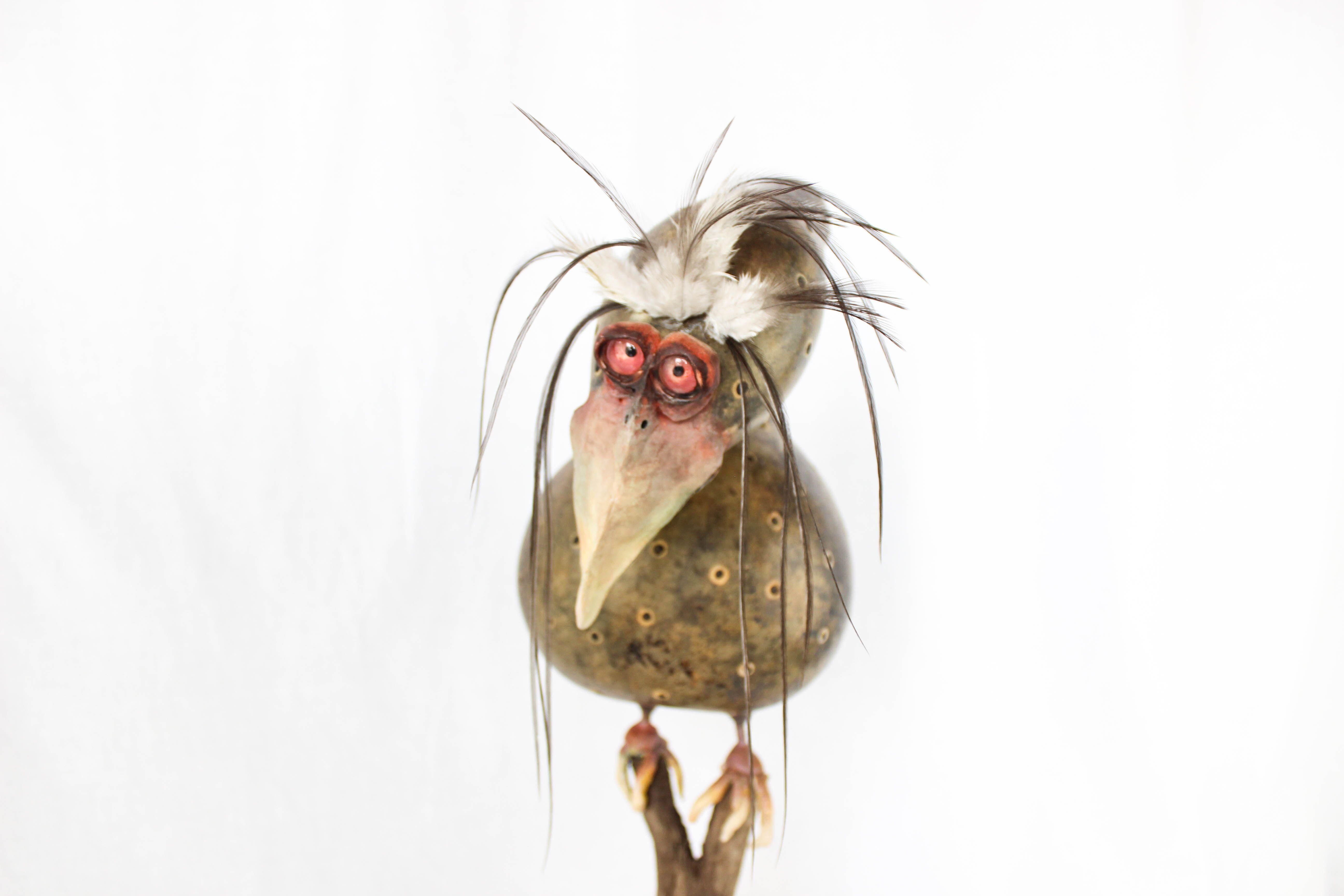 「Gourds」おしゃれまとめの人気アイデア|Pinterest|Klay Hawk Dolls(画像あり)