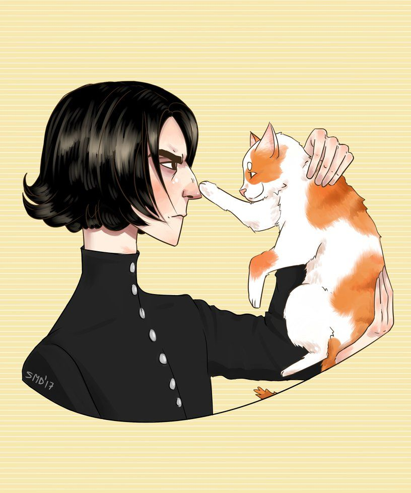 Snape: Narcissa I said only black cats  Narcissa: but he's