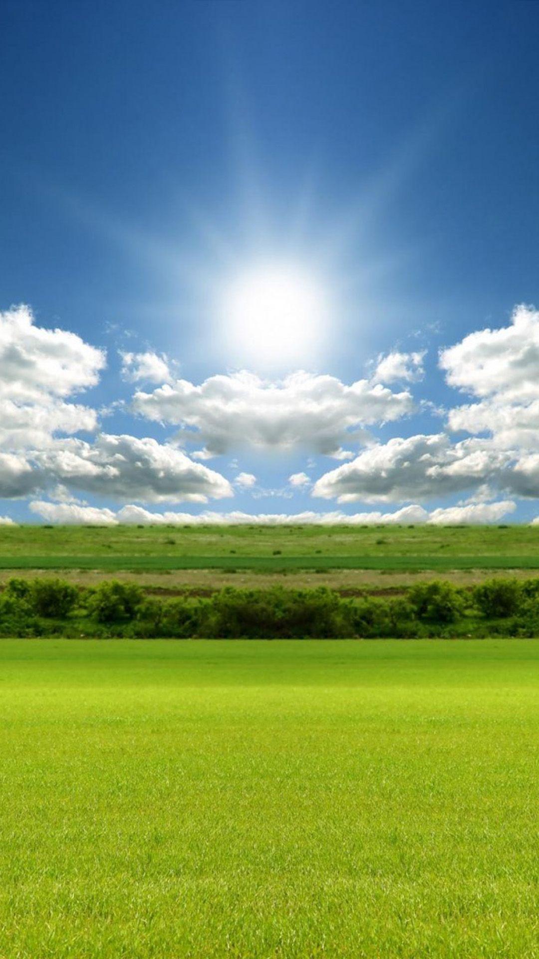 Hd wallpaper qmobile - Sunlight Nature Green Field Sky Iphone 6 Plus Wallpaper