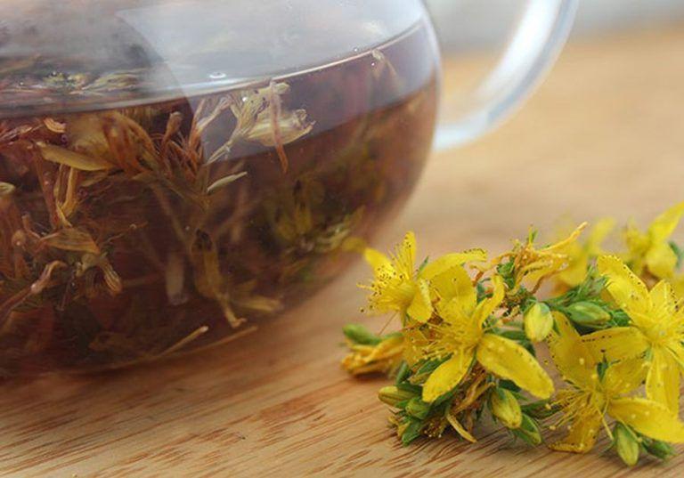 ciuperci de ceai cu varicoză)