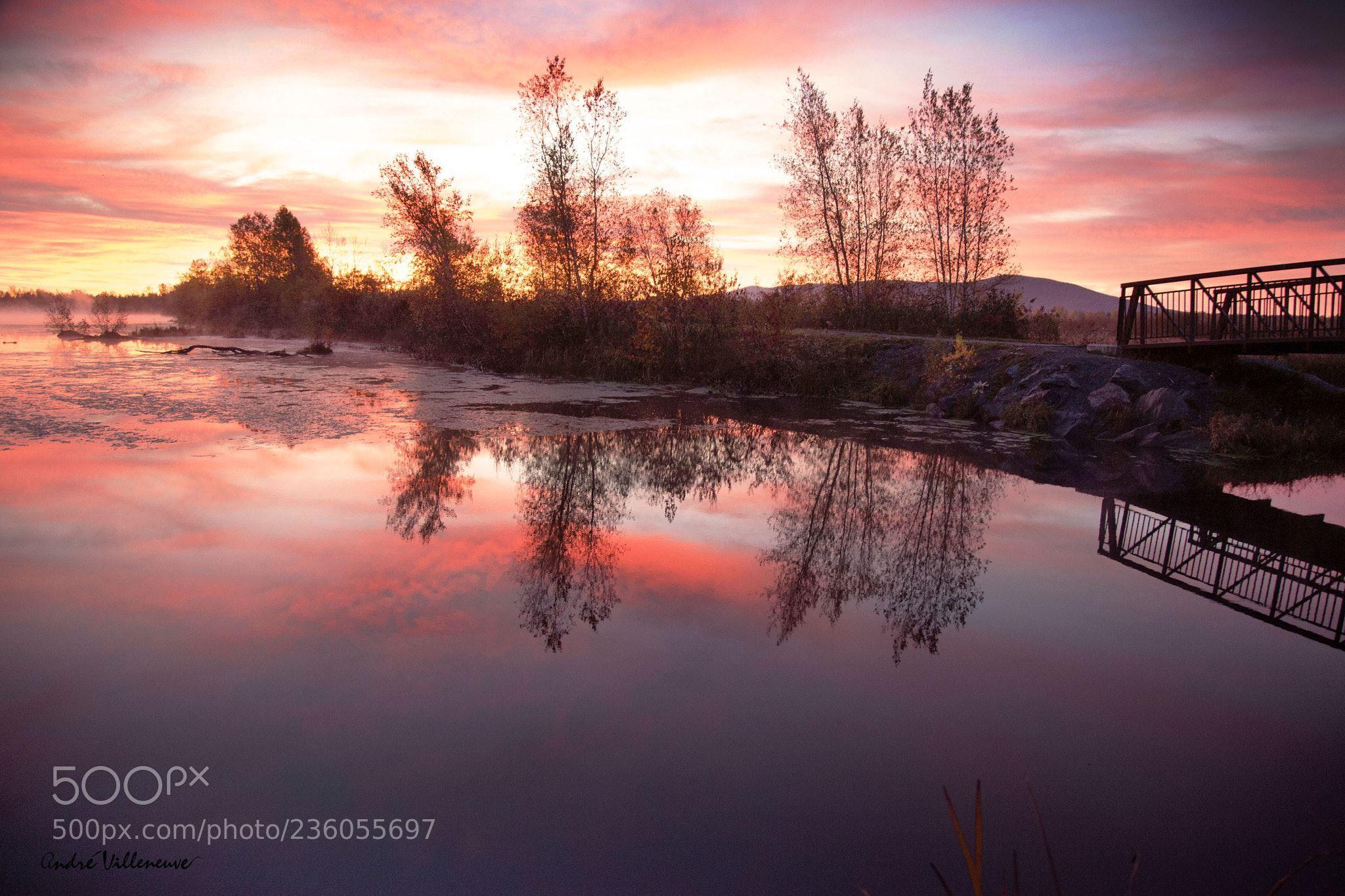 L'eau douce (Andre Villeneuve / Granby / Canada) #Canon EOS 5D Mark II #landscape #photo #nature