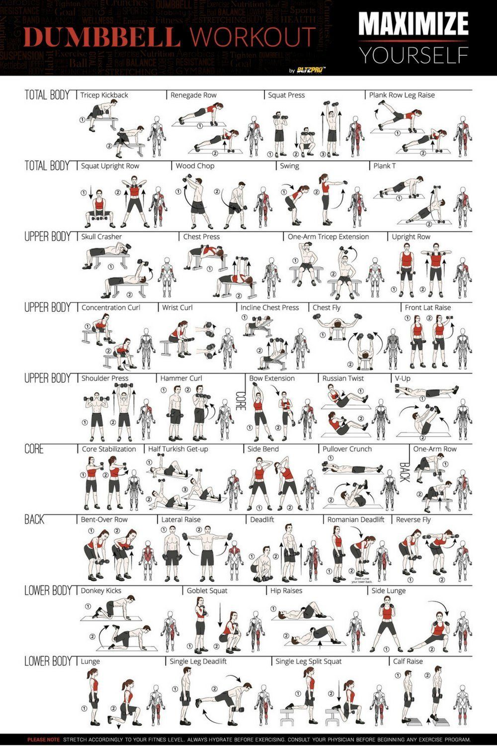 Bltzpro Exercise Fitness Poster, Full Body Workout