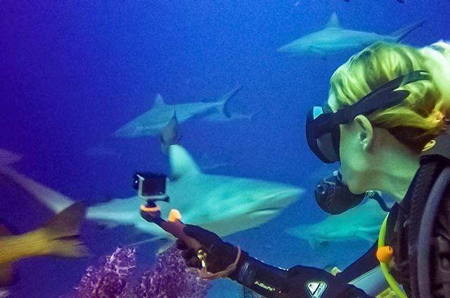 #explore #padi #underwaterphotography #underwater #wanderlust #pacificocean #scubadiving #dive #coralsea #ocean #kauai  #gopro #goprooftheday #goprohero4 #liveaboard #goprohero #goprohero5 #goproeverything #photography #travelingram #instatravel #instatra