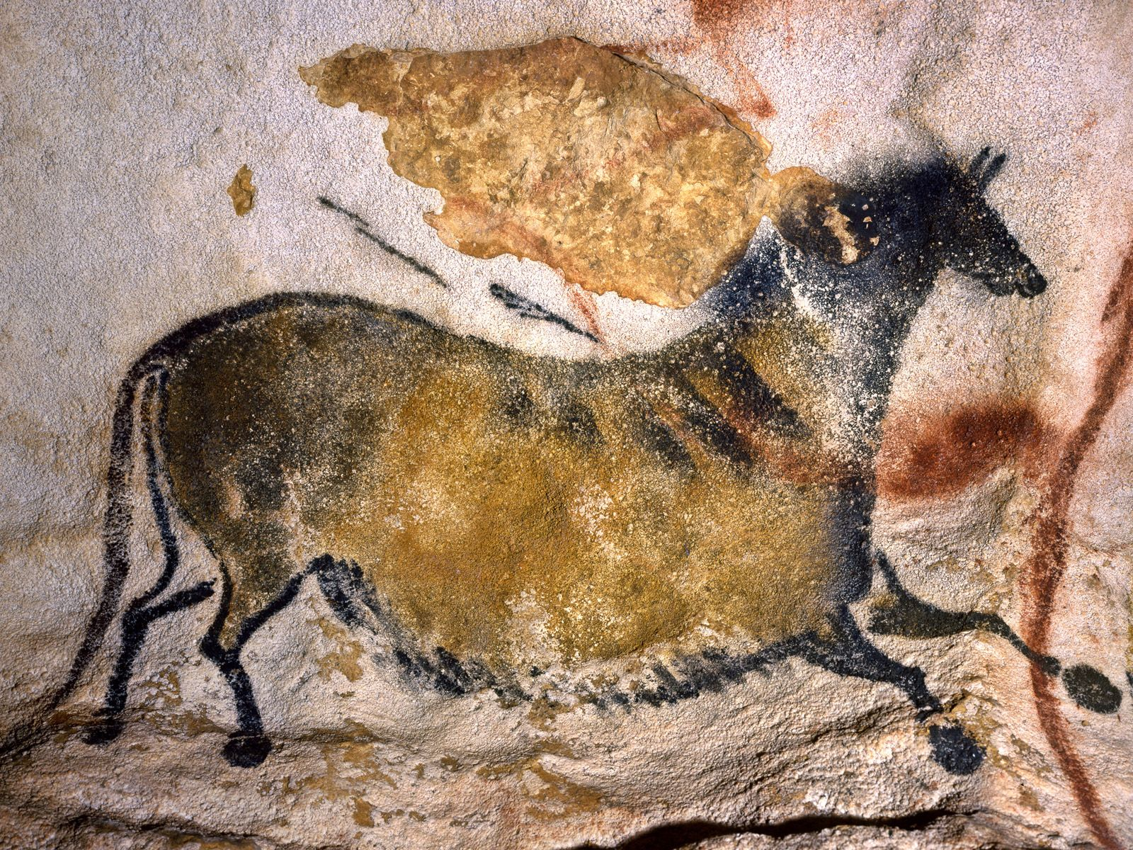 Рисунки пещеры ласко