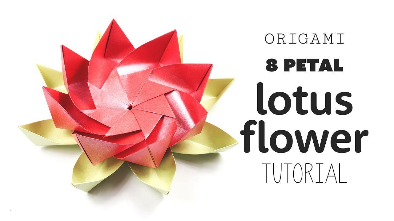Origami 8 petal modular lotus flower diy paper kawaii videos diy origami 8 petal modular lotus flower diy paper kawaii izmirmasajfo