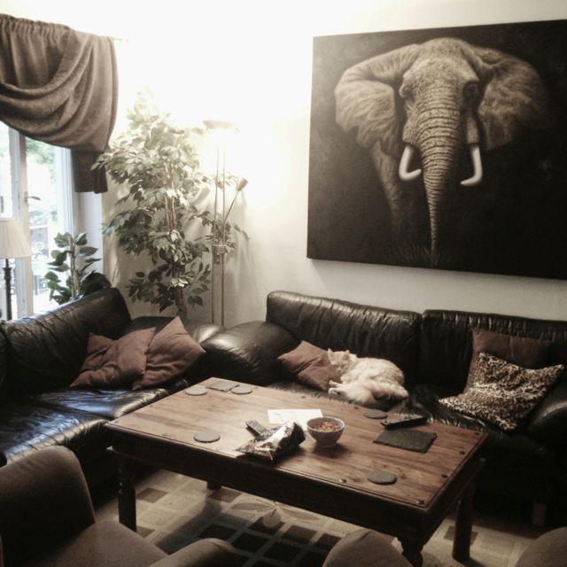 I Love The Elephant Canvas I Got At My Birthday 3 Home Livingroom Canvas Elephant Sofa Cosy Interior Cozy Room Living Room Decor Home Decor