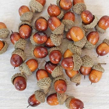 Assorted Artificial Acorns in Box