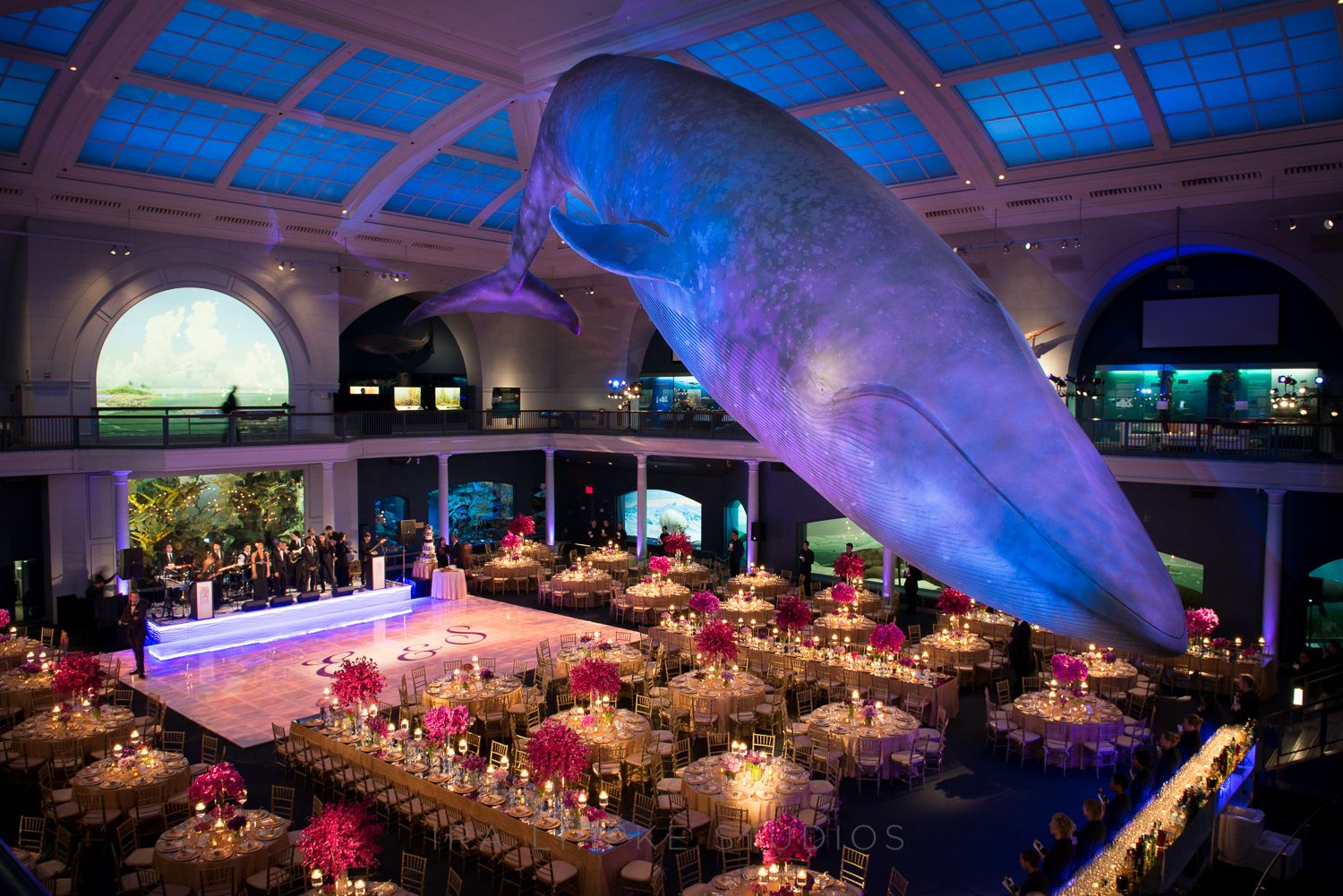 8 Surprising Places You Can Actually Get Married | Natural history ...