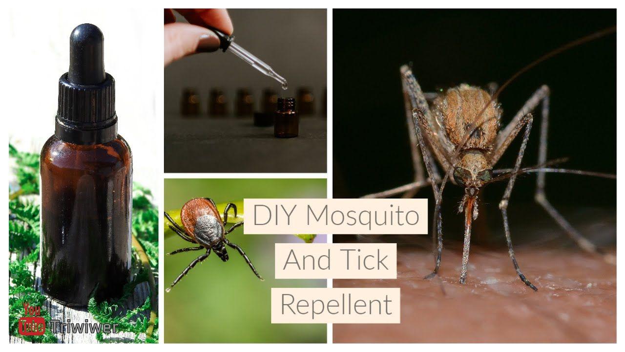 Mosquito & Tick Control DIY Homemade Repellent in 2020