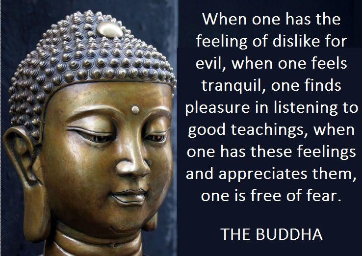 716 Best Buddhist Philosophy Inspirational Quotes Images: GAUTAM BUDDHA'S TEACHINGS