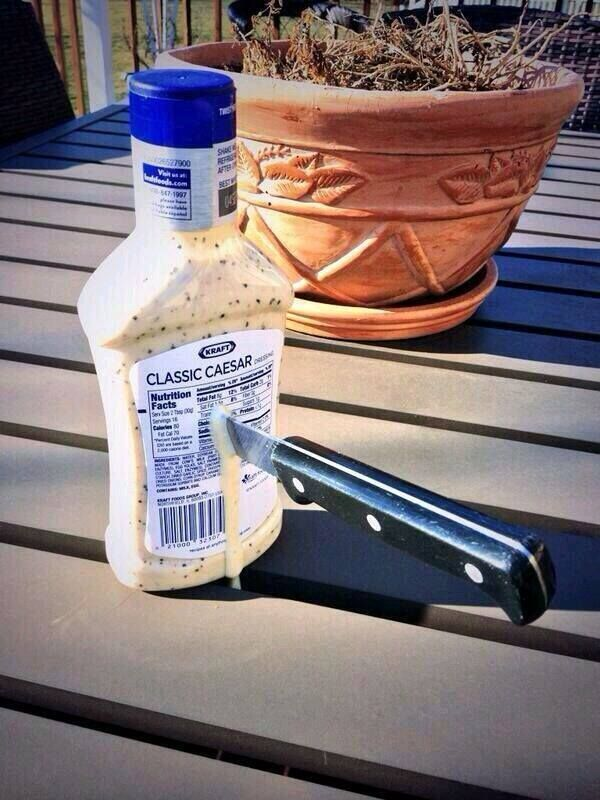 We should totally just stab Caesar!!