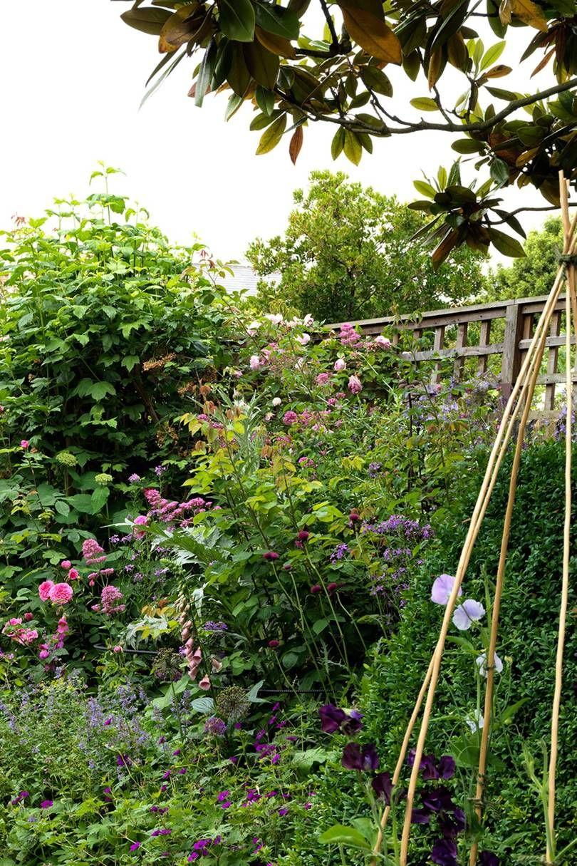 Photo of Butter Wakefield's London garden