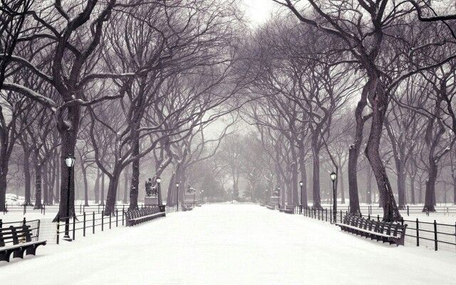 Winter in the city ❄