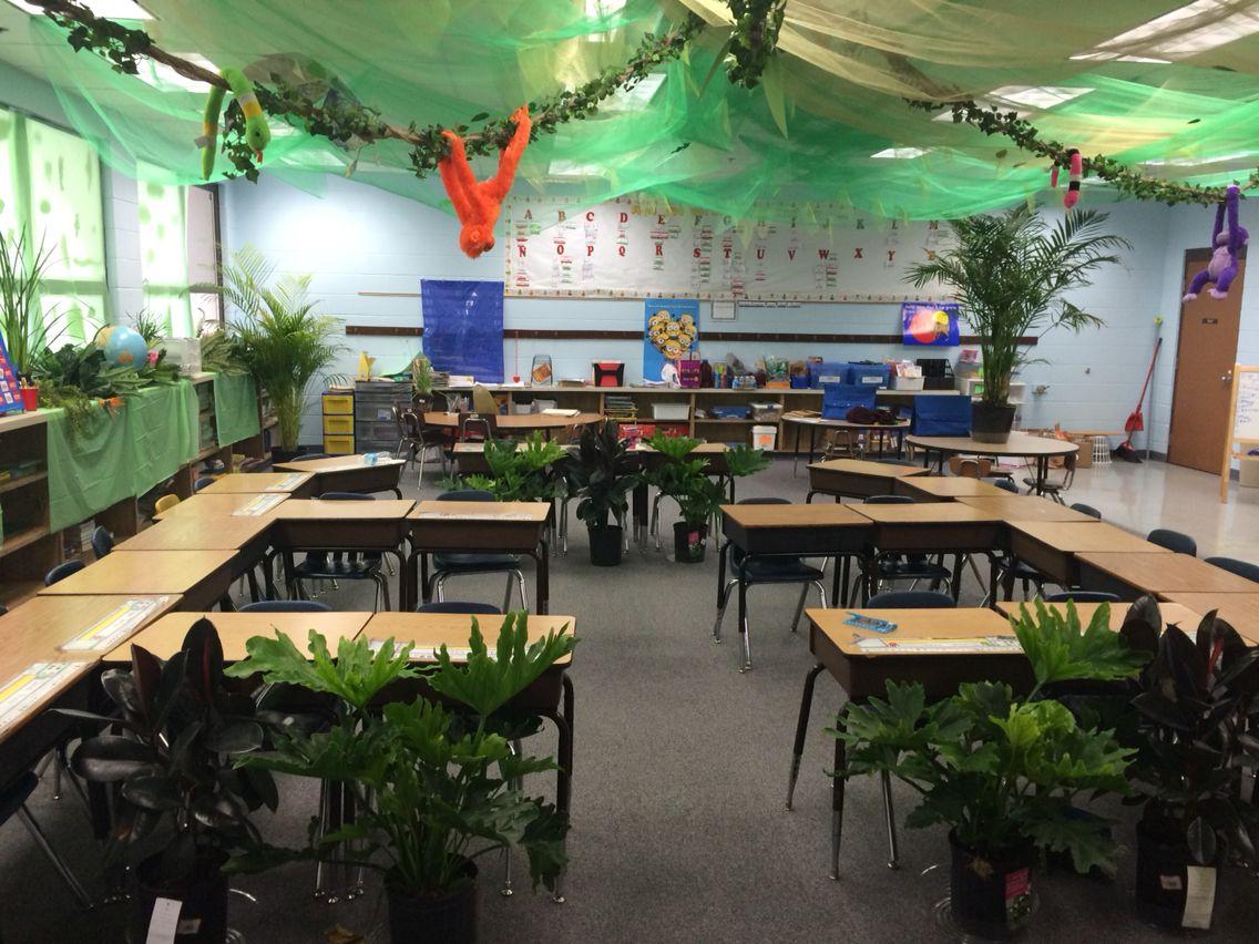 Rainforest Classroom Set Up