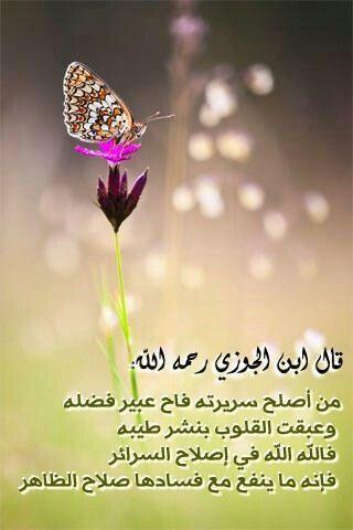 ابن الجوزي رحمه الله Qoutes Dandelion Plants